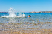 Swimmer at Sardinia coast. — ストック写真