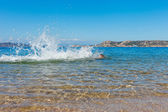 Swimmer at Sardinia coast. — Stock fotografie