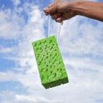 Sponge. — Stock Photo #37191477