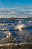 Stormy Baltic sea. — Foto Stock