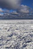 Morze bałtyckie zimą. — Zdjęcie stockowe
