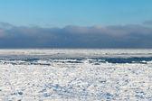 Frozen Baltic sea. — Stock Photo