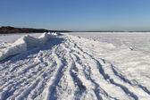 Costa do mar báltico no inverno. — Foto Stock