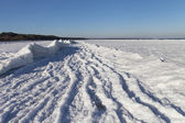 Mer baltique-côte en hiver. — Photo