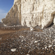 Seven Sisters cliff in East Sussex, England. — Stock Photo #42972187