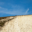 Seven Sisters cliffs, England, UK. — Stock Photo #43289665