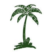 Hand drawn coconut tree — Stock Vector