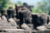 Buddha in Borobudur, Indonesia — Stock Photo