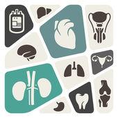 Medical and anatomy theme background — Stock vektor