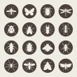 Insects icon set — Stock Vector