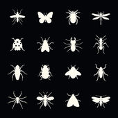 Insects vector icon set — Stock Vector