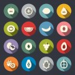 Fruits icon set — Stock Vector #42876453