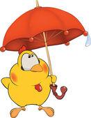 Chicken and an umbrella cartoon — Stock Vector