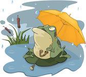 Grenouille et un dessin animé de pluie — Vecteur