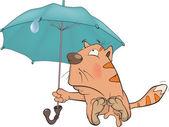 Cat and an umbrella. Cartoon — Stock Vector