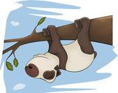 The bear panda sleeps on a tree. Cartoon — Stock Photo