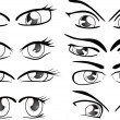 The complete set of the drawn eyes — Stock Vector #33045597