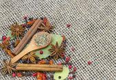 En mängd kryddor — Stockfoto