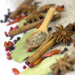 A variety of spices  isolated - Foto Stock