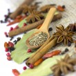 A variety of spices  isolated - Stock fotografie