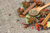 A variety of spices — Stock Photo