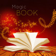 Opened book with magic light. — Stock Vector