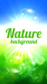 Nature background — Stock fotografie