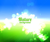 Nature background — Photo