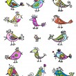 Set of funny colorful birds for your design — Stock Vector