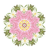 Floral frame circle for your design — Stockvektor