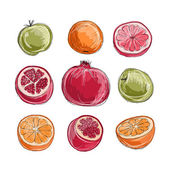 Set of fruits, sketch for your design — Stock Vector