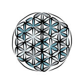 Flower of Life, sketch for your design — Stock Vector