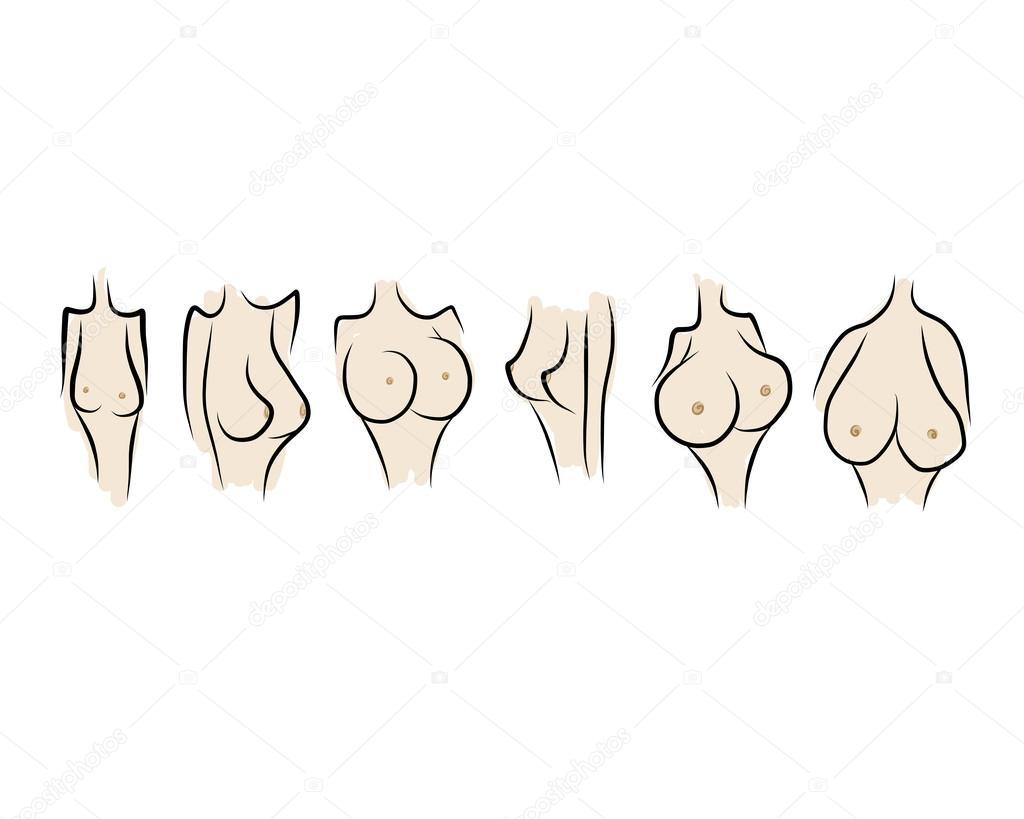 Типы женской груди фотографии 18 фотография