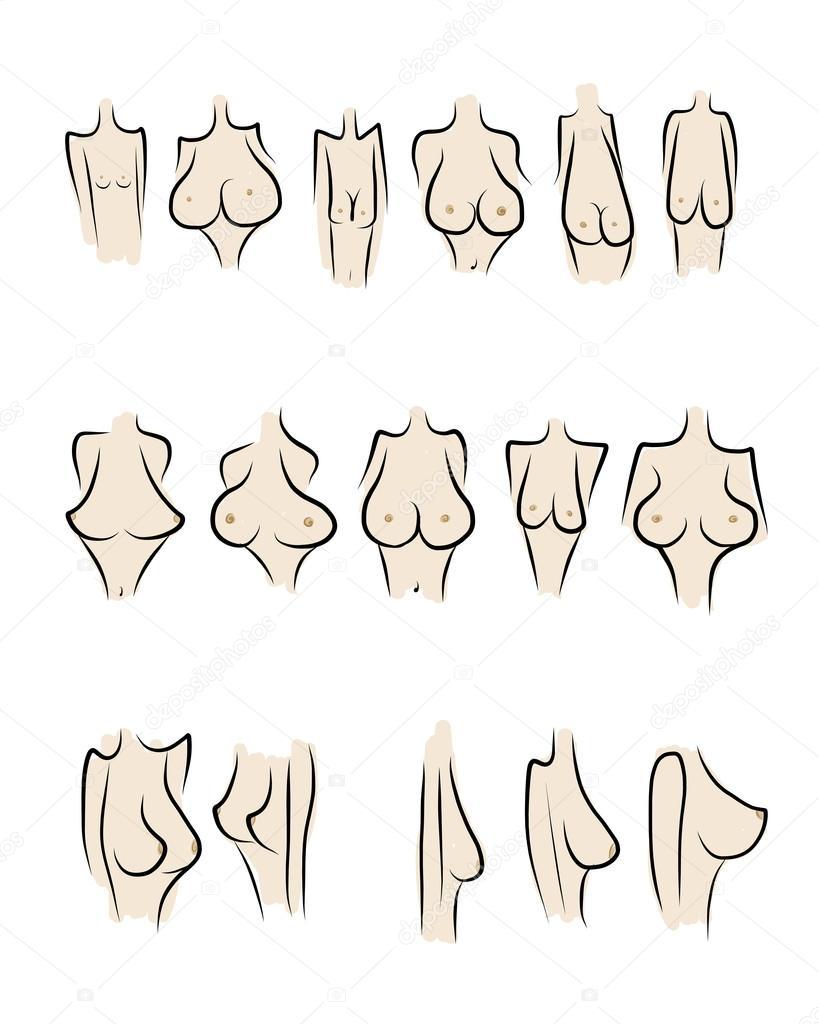 Типы женской груди фотографии 9 фотография