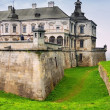 Old castle — Stock Photo #33695561