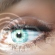 Digital eye — Stock Photo #13383348