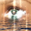 Stock Photo: Eye overlooking water scenic