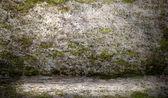 Taş duvar dokusu — Stok fotoğraf