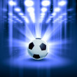 Royalty-Free Stock Photo: Black and white soccer ball