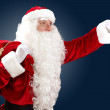 Royalty-Free Stock Photo: Santa claus with his gift bag