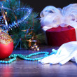 Christmas decoration — Stock Photo #16364145