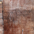 Texture of old wooden wall — Stock Photo #16374877