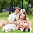 Young Family Outdoors in summer park with a dog — Stock Photo #19580851