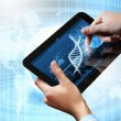 Stock Photo: Dna strand On The Tablet Screen