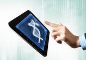 Cadeia de dna na tela do tablet — Foto Stock