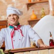 Young male cook — Stock Photo #26312033