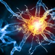 Illustration of a nerve cell — Stock Photo #26315089