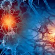 Illustration of a nerve cell — Stock Photo #26315125