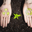 Human hands and ecology symbols — Stock Photo #26348301
