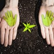 Human hands and ecology symbols — Stock Photo #26348309